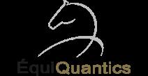 Equi Quantics
