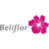 Belifor